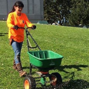 Woman pushing a seed spreader