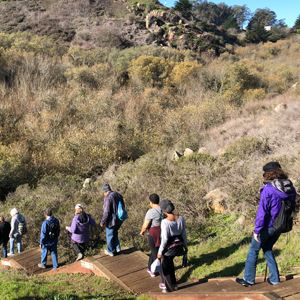 Group following a trail down a steep hill