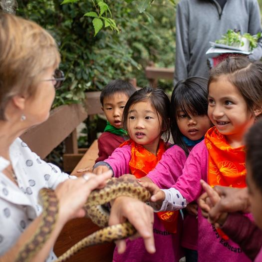 Woman holding a snake for kids to interact with