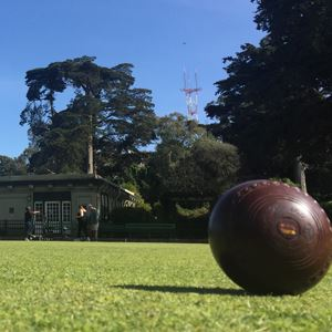lawn bowling ball on the grass