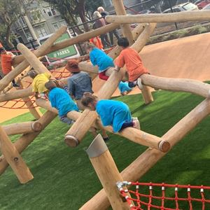 Kids playing on log play equipment